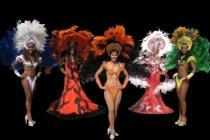 Bikinis Samba et Fantasias (grands costumes du Carnaval de Rio de Janeiro)