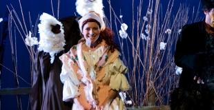 Louisa découvre les Tiges de coton et le Loup-bagou