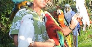 Mark Steiger et ses perroquets