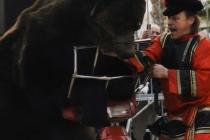 ours à bandol sur sa moto