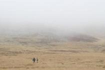 Les landes infinies et mystérieuses du Mont Lozère par temps de brume, si semblables à celles de la