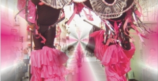 les échassiers danseurs Sambéchasse de Couleur des Tropiques, 1 à 2 artistes
