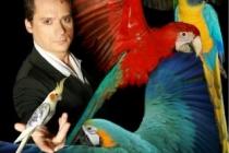 ARNO Le Magicien des oiseaux