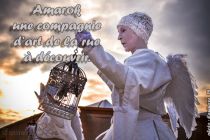 Amarok Cie