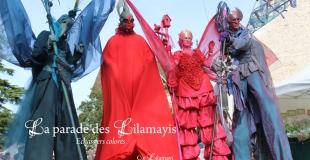 échassiers colorés nature fleurs oiseaux - Cie Lilamayi fête de la nature