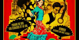 Flamenco_occitanie