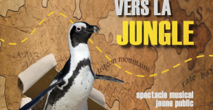 Affiche du Long voyage du pingouin vers la jungle