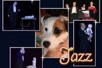 Jazz le chien