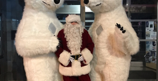 Ours et Père Noël