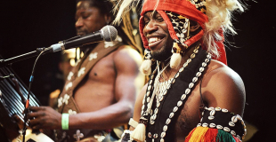 doubayabi percussion tambour musique guinee danse africaine wim percussion